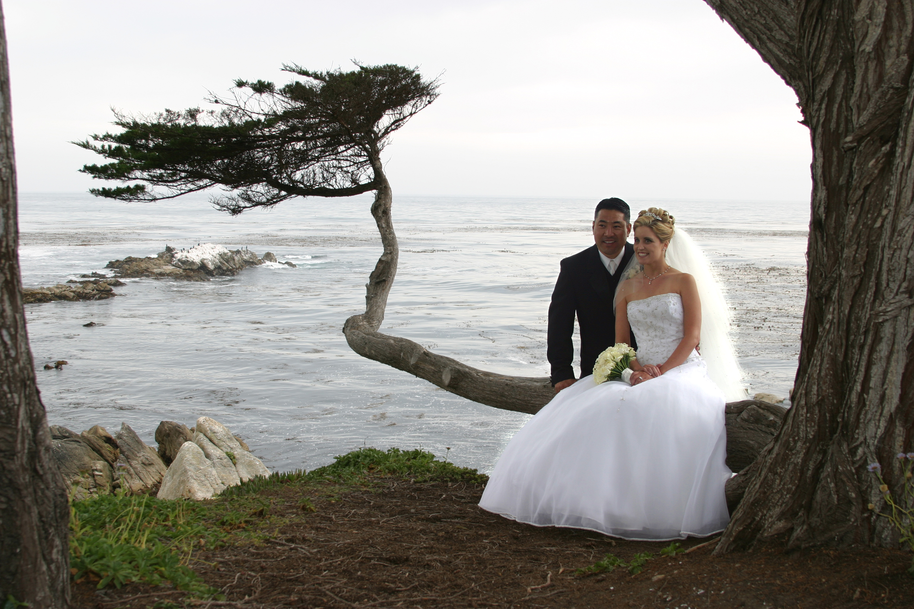 Bride and Groom overlooking the water.