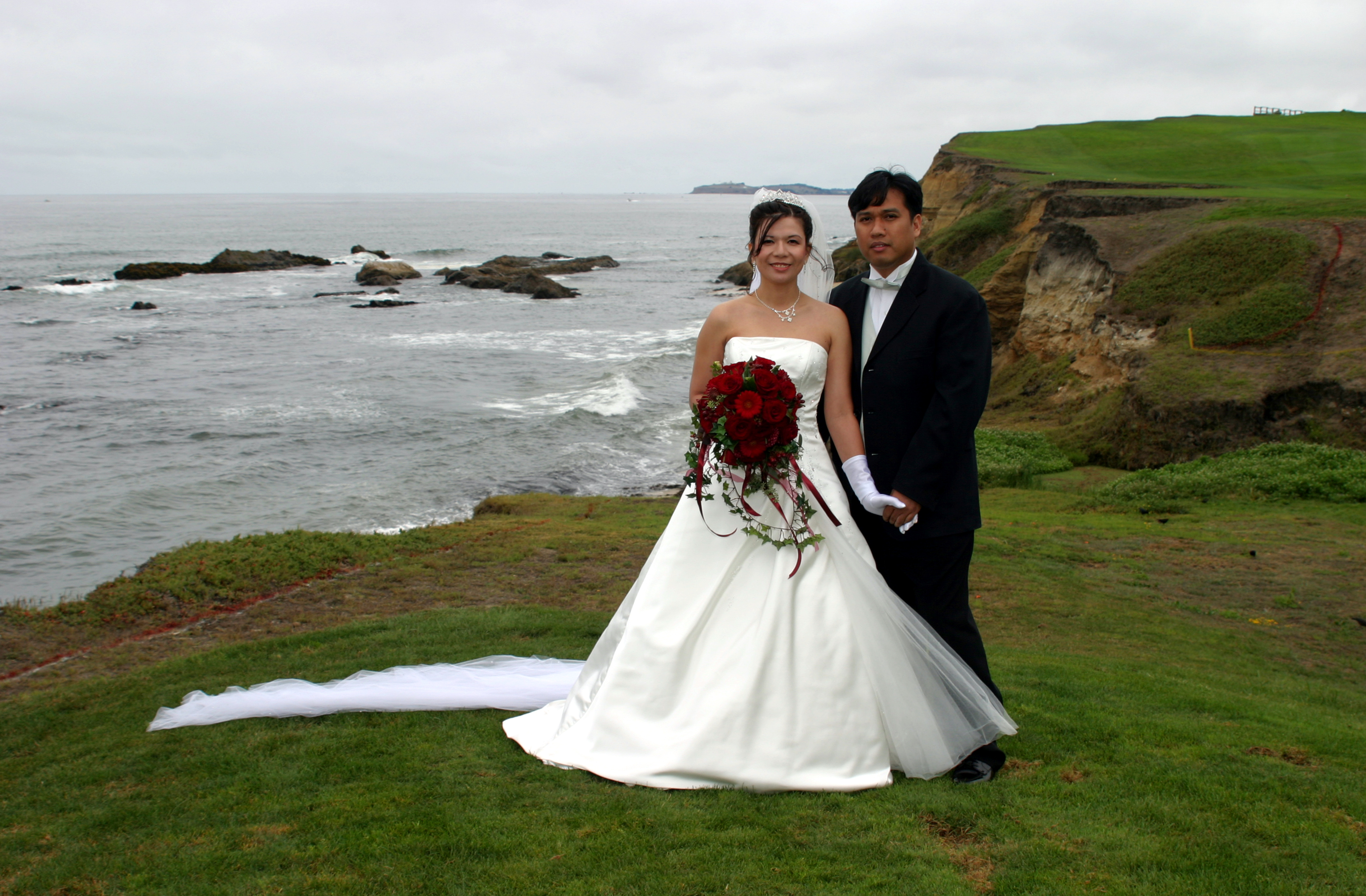 Bride and groom overlooking green coastline.
